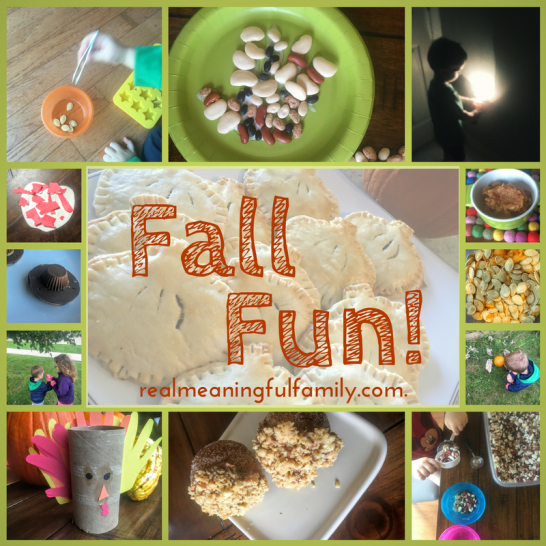 Fall preview collage 2